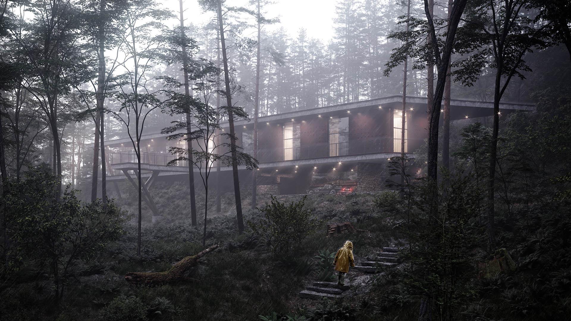 arc house górski dom